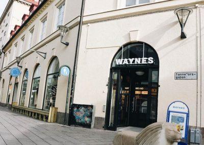waynes3